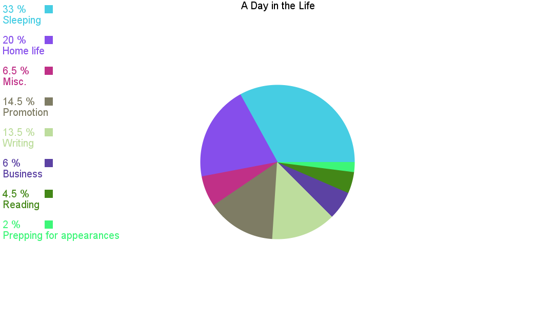 Day In The Life Pie Chart Marissa Meyer